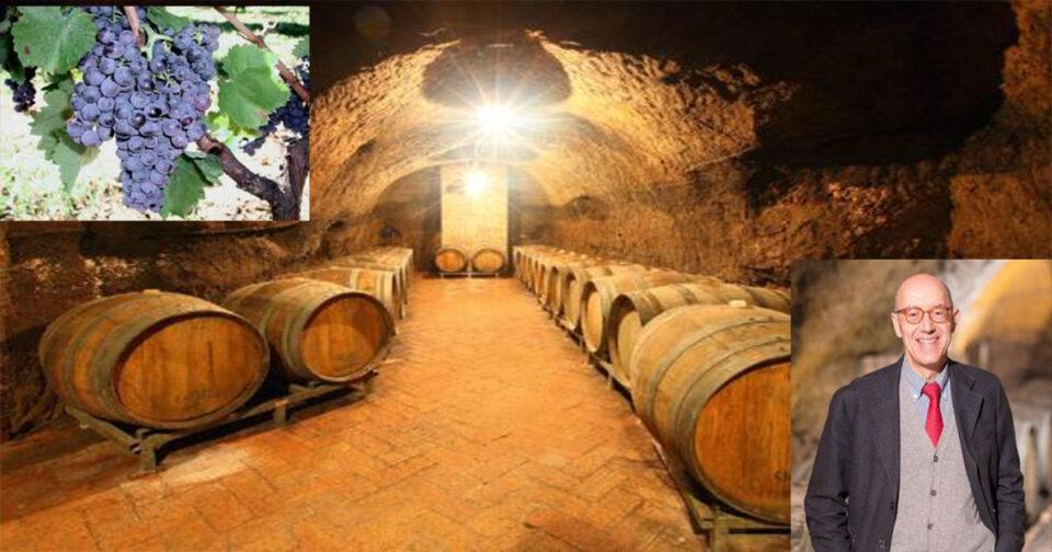 RIONERO: L'azienda vinicola rionerese Cantine del Notaio risulta la cantina più premiata d'Italia